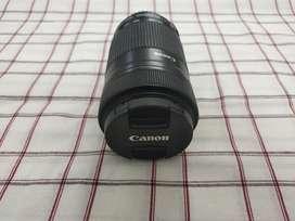 Canon 55-250mm STM zoom lens