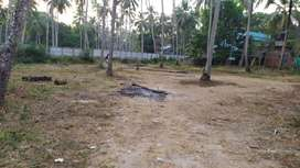 Plot / Land for SALE GURUVAYUR near temple 10 cent to 25 cents