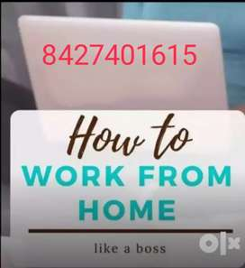 Mis executive are required online home based work