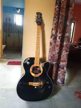 Grason semi acoustic guitar and bag