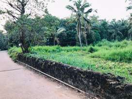 50cent plot for sale nearby road