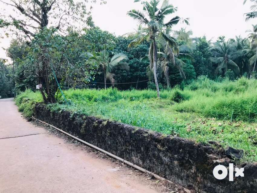 50cent plot for sale nearby road 0