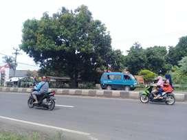 Tanah + Rumah Tempat Usaha 526m2 Jl Raya Pantura Karawang Dijual Murah