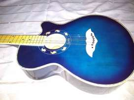 Acoustic guitar New