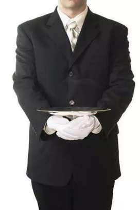 Full Time male servant