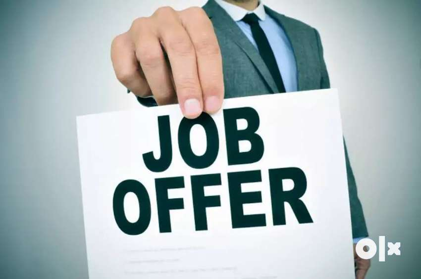 Urgent hiring for Freshers 0