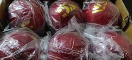 Willcarft cricket balls 4Piece