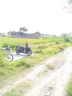 Tanah 9 x 9 di Tembung Jl Rahayu