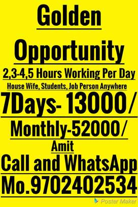 Home Job Easy work weekly salary provide 13000