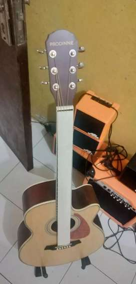 Gitar akustik prodinne original new tanam besi pikguard