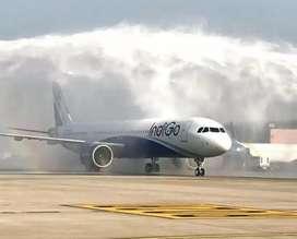 Indigo Airline Urgent hiring for ground staff Aviation Meteorologist.