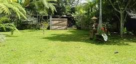 BUC Jual tanah payangan bonus villa kayu full furnish
