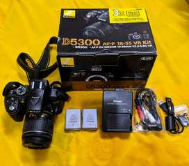Nikon D5300 Camera with built-in Wifi and GPS and 18-55 Kit Lens