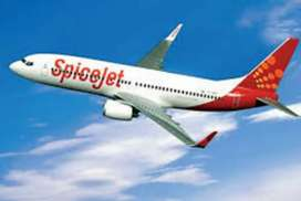 SpiceJet airlines hiring