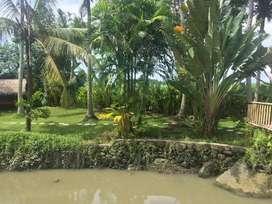Tanah Premium lingkungan Vila Vila hanya 600 mtr ke Pantai Pererenan