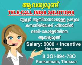 Tele-callers in Thrissur (No target)