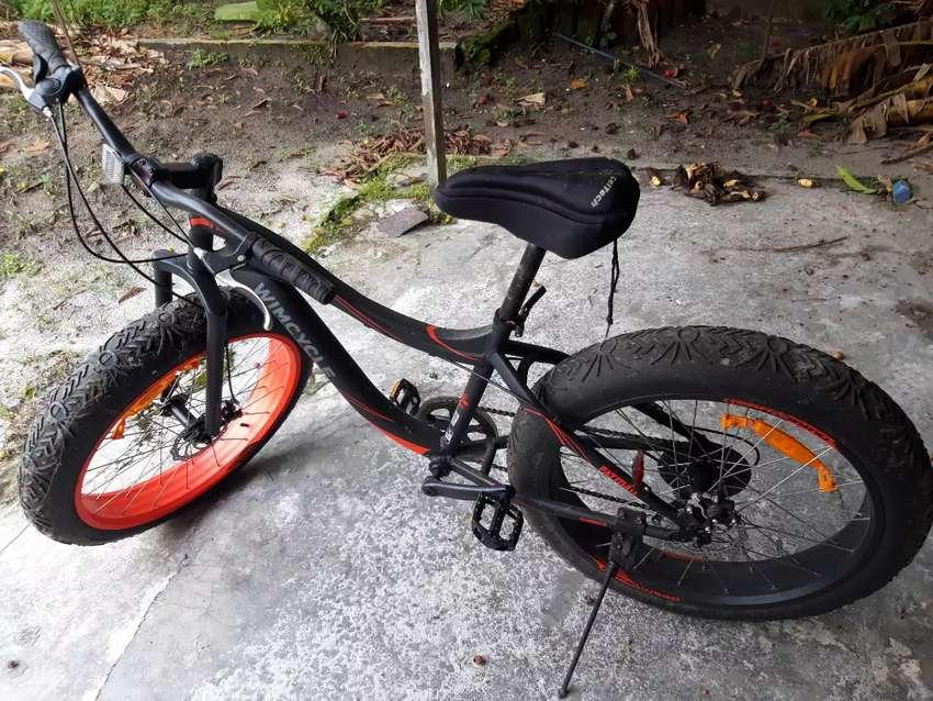 Jual wimcycle fatman 0