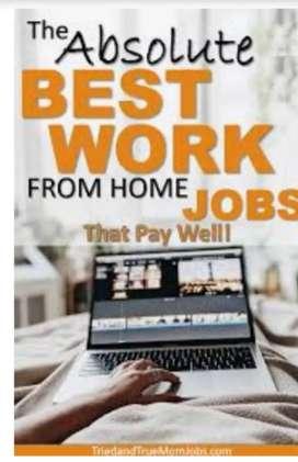 Computer operator job /pdf to ms Word offline work
