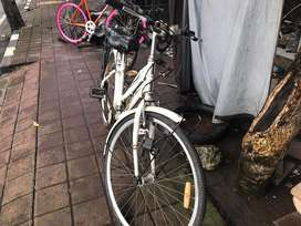 Sepeda wanita starlite
