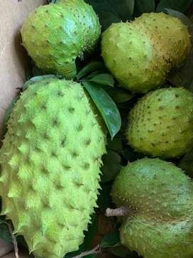 Mulseetha Fruit