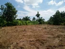 Tanah ter murah se pekanbaru sekeliling kampus 20×30 600m2