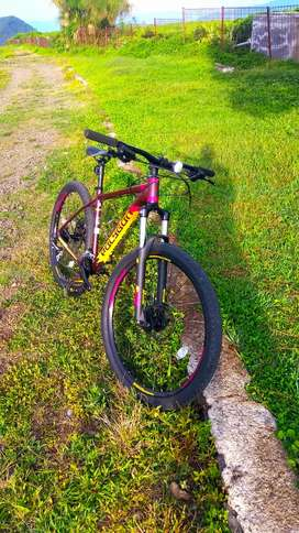 Sepeda Polygon Premier 4 2020