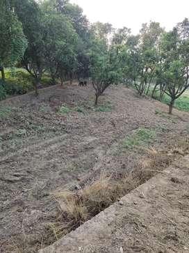 Jehta maal road ( near outer ring road ) dakil khariz turant kabza