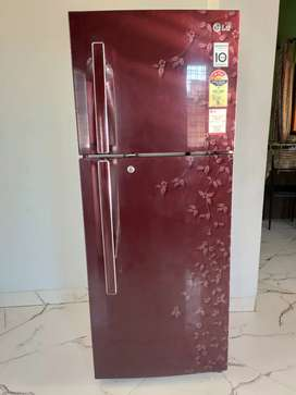 Lg 258L 4star double door fridge