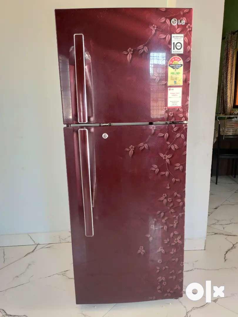 Lg 258L 4star double door fridge