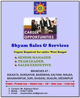 MANAGER, TEAM LEDAR,TELE CALLERS AND SALES EXCUTIVE.