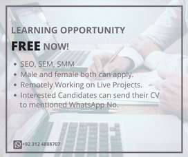 Online SEO, SMM, SEM Course Opportunity