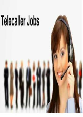 BPO & TELECALLING: INTERNATIONAL VOICE/NON-VOICE  PROCESS(LADIES ONLY)