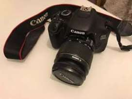 Canon cameras are available for rent